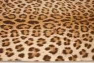 Bild på mattan Leo
