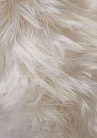 Bild på mattan Molly Hair Rug