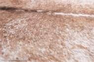 Bild på mattan Fejkad kohud - Lasso