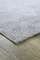 Bild på mattan Fern