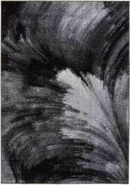 Bild på mattan Raven