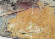 Bild på mattan Tijuana